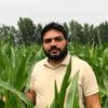 Mehmood Ali Noor