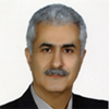 Reza Pilehchian Lanroudi
