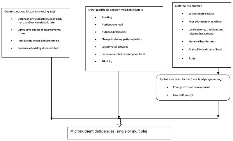 Micronutrient deficiency, a novel nutritional risk factor